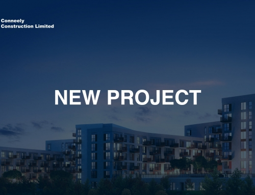 Conneely starts Lille Road – New Project